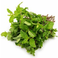 Leaves Mint