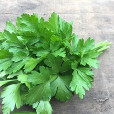 Leaves Parsley